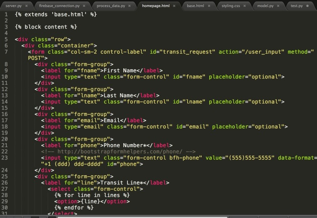 HTML code for my homepage, focused on the form